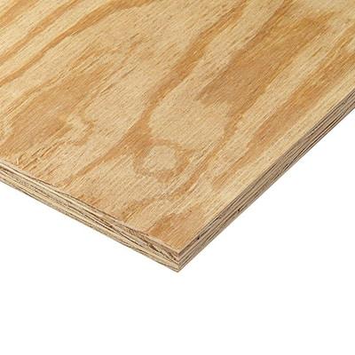 2 x 4-foot pressure treated plywood panel