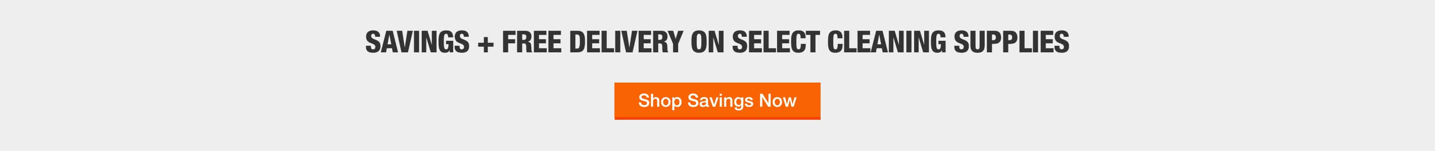SAVINGS + FREE DELIVERY ON SELECT CLEANING SUPPLIES Shop Savings Now