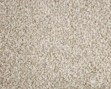 Shop Beige Carpet