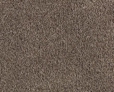 Shop Brown Carpet