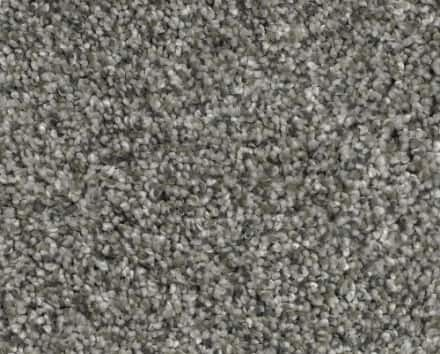 Shop Gray Carpet