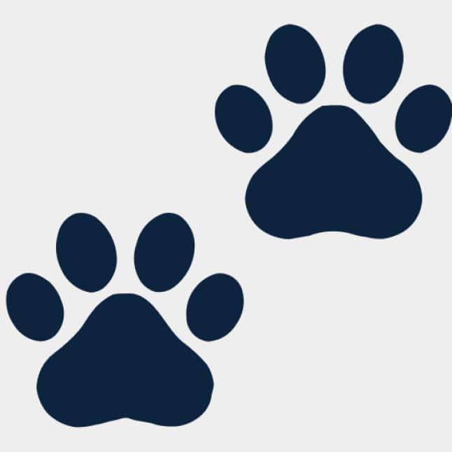 Pet Paw Print Icon