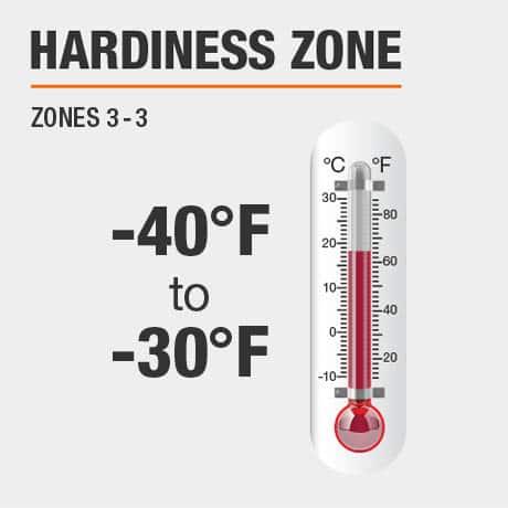 Hardiness Zone   Zone 3-9