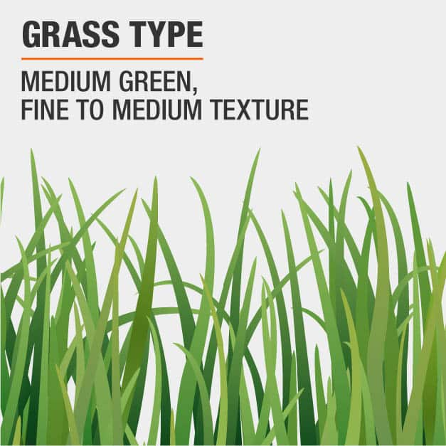 Mix, Medium Green, Fine to Medium Texture