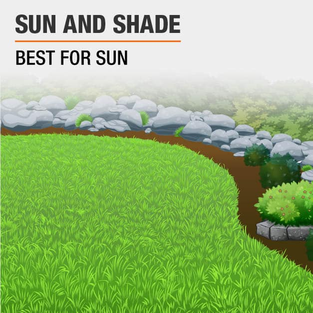 Best for sun