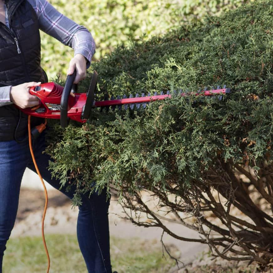 Hedge trimmer cutting bush effortlessly