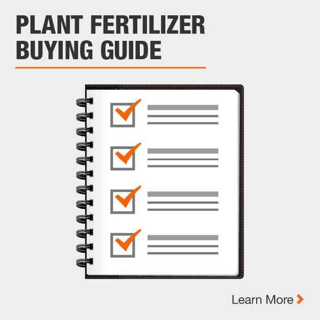 Plant Fertilizer Buying Guide