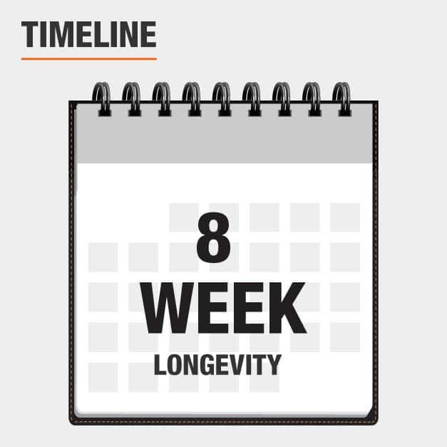 8 week longevity