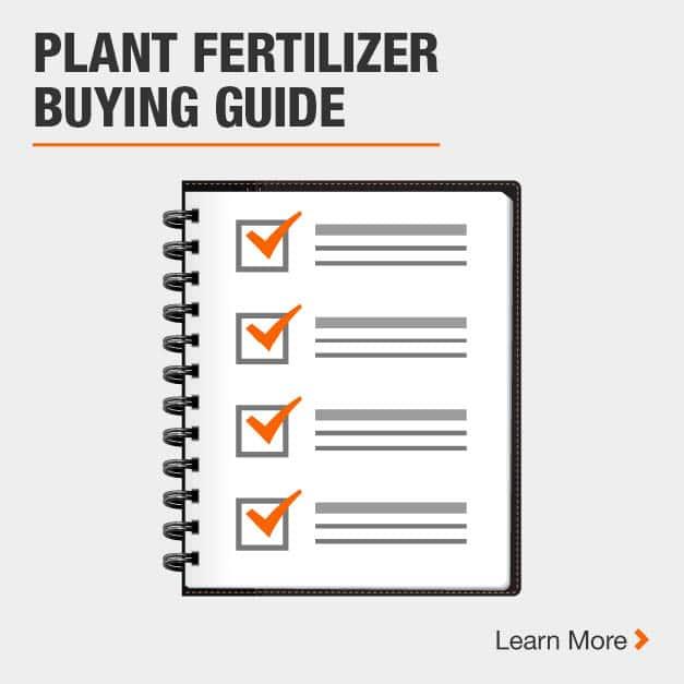 Plant Fertilizer Buying Guide