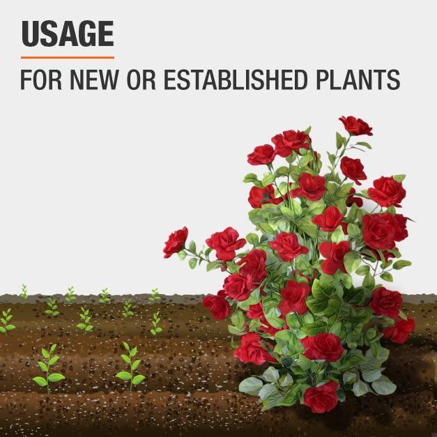 Plant Food For new or established plants