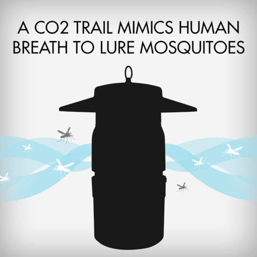 As a secondary lure, the trap uses a TiO2 titanium dioxide-coated surface that mimics human breath. Mosquitoes will instinctively follow this trail.