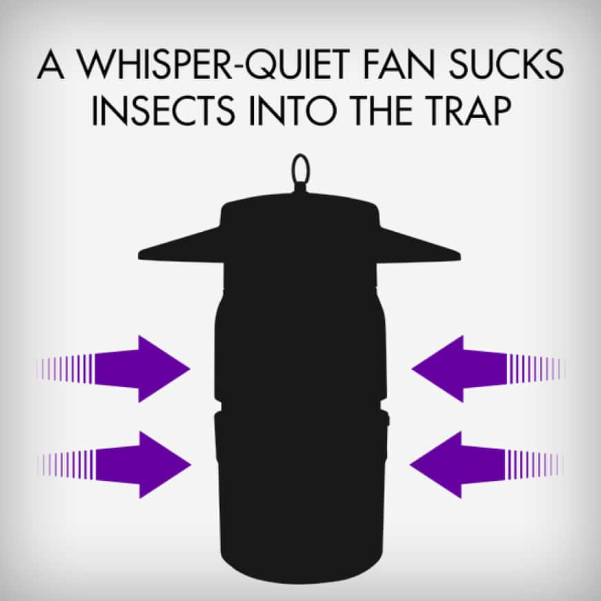 The final step in the process is a powerful, whisper quiet fan that  sucks mosquitoes and other insects into the trap where they dehydrate and die.