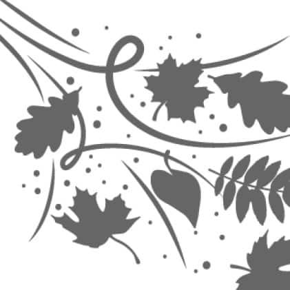 Leaves and Gutter Debris