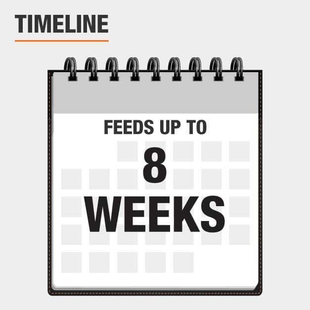 Feeds up to 8 weeks