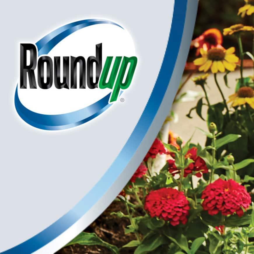 Roundup Ready-To-Use Sure Shot Wand