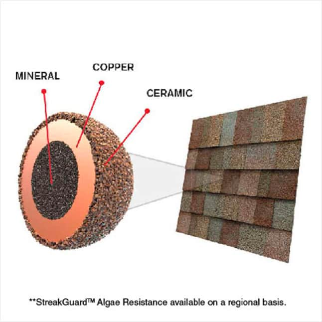Diagram showing granule with StreakGuard Algae resistance protection