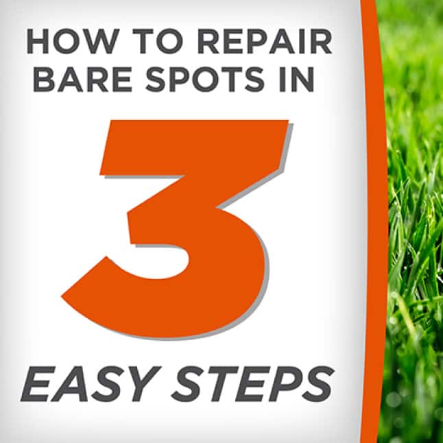 Pennington One Step Complete for Bermudagrass Areas How to Apply