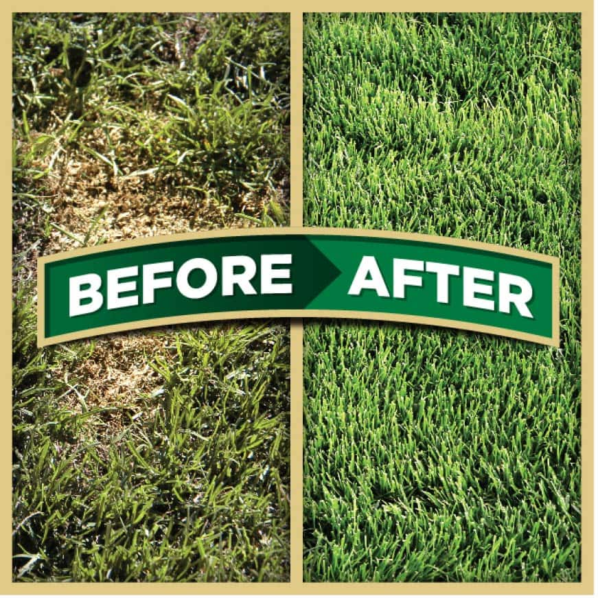 Pennington One Step Complete for Tall Fescue Areas Repairs Bare Spots