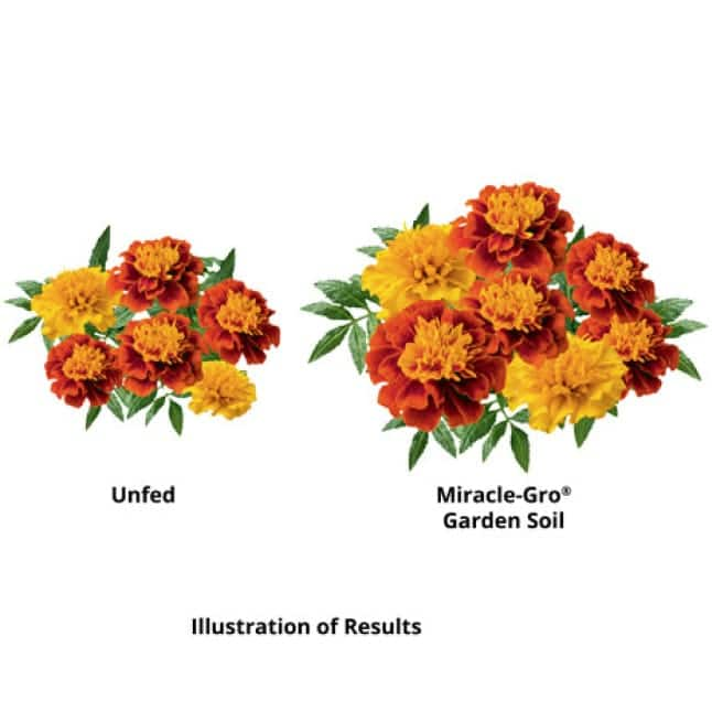 Illustration of results of unfed vs fed.