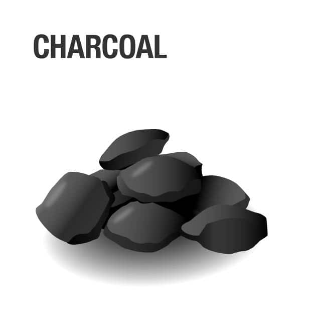 Grill fueled by Charcoal