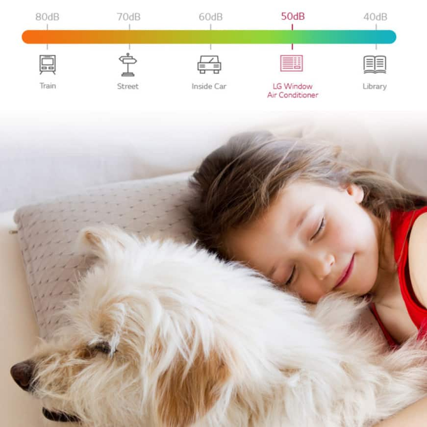 Young girl sleeping soundly with dog and lo-decibel chart