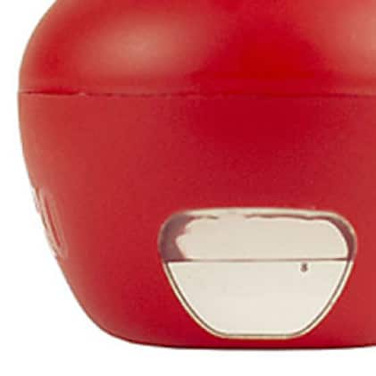 fruit fly trap features a built-in window
