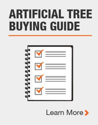 Tree buying guide