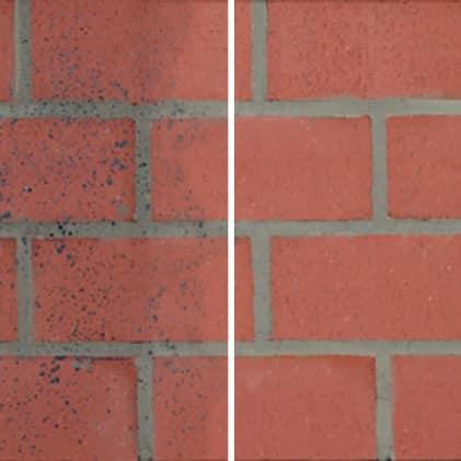 Mildew stain on left side of brick versus no mildew on right side of brick substrate