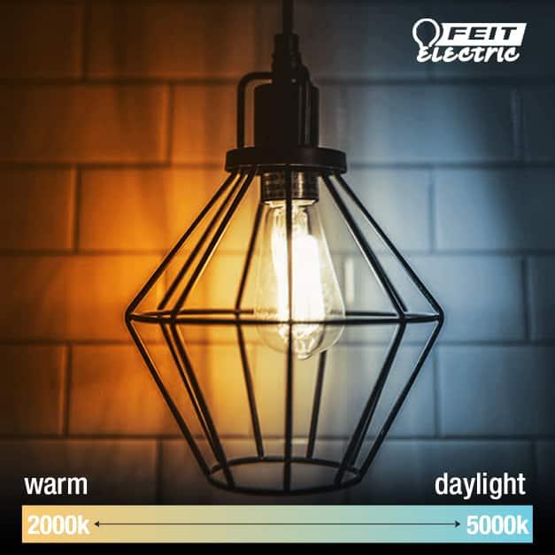 Feit Electric Daylight warm white amber smoke Vintage LED Edison Light bulb