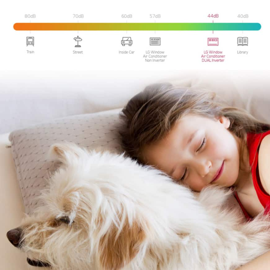 Young girl sleeping soundly with dog and a lo-decibel chart
