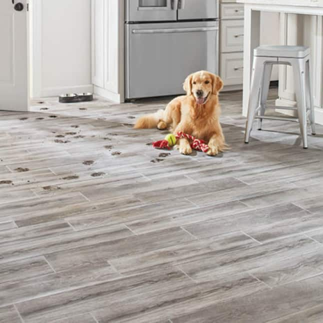 Dog sitting on durable tile floor in a kitchen with muddy paw tracks