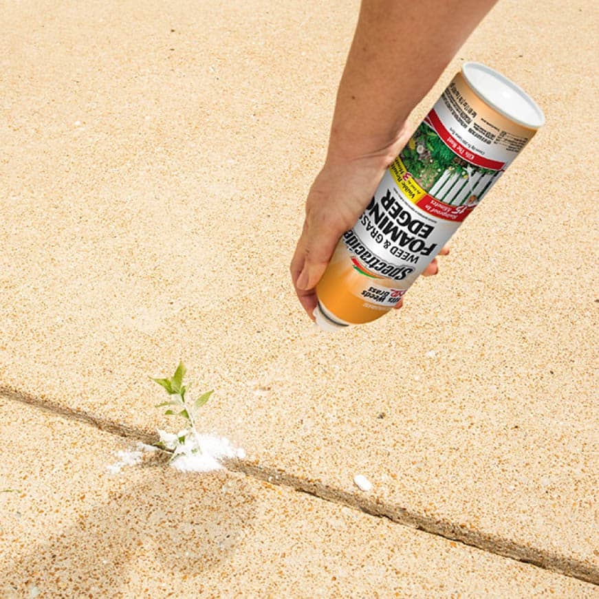 person spraying weed and grass killer weed growing in concrete driveway