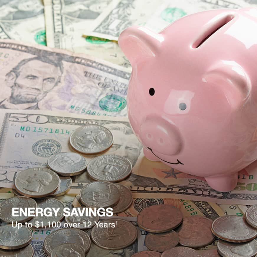 Energy Savings up to $1,000 for 12 Years
