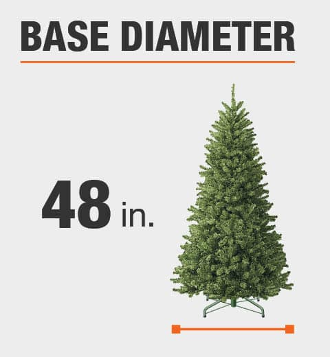 The base diameter of this tree is 48 in.