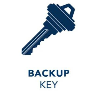 Backup key icon