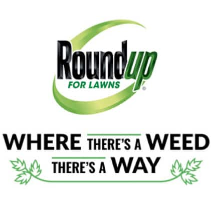 Where There's A Weed There's A Way