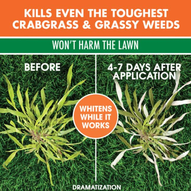 Kills Even The Toughest Crabgrass And Grassy Weeds