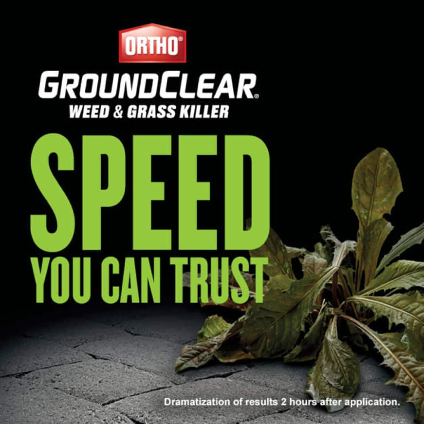 GroundClear - Speed You Can Trust