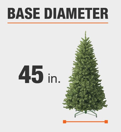 The base diameter of this tree is 45 in.