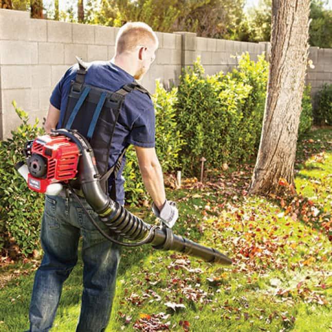 leaf blowers, backpack, handheld, Troy-Bilt