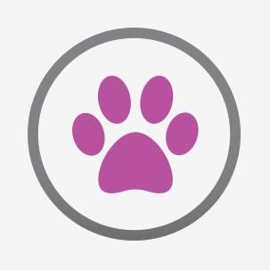 Icon of dog paw print