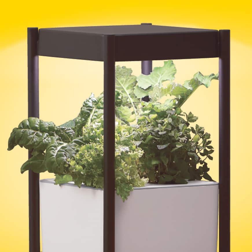 Cropped photo of Scotts Miracle-Gro Indoor Growing System product shot with leafy green plant