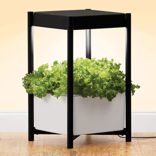 Scotts Miracle-Gro Indoor Growing System product shot with leafy green plant