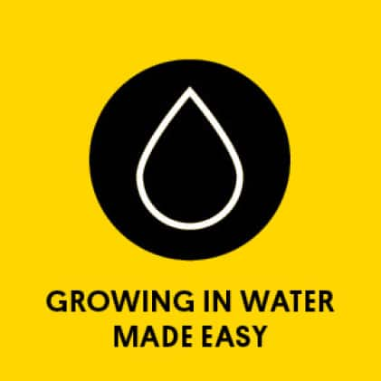 Graphic of water droplet with title: Growing in water made easy