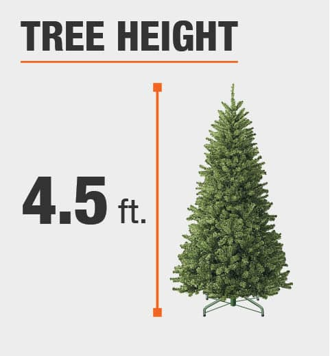 The tree height is 4.5 ft.