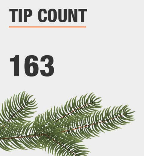 The tip count is 163
