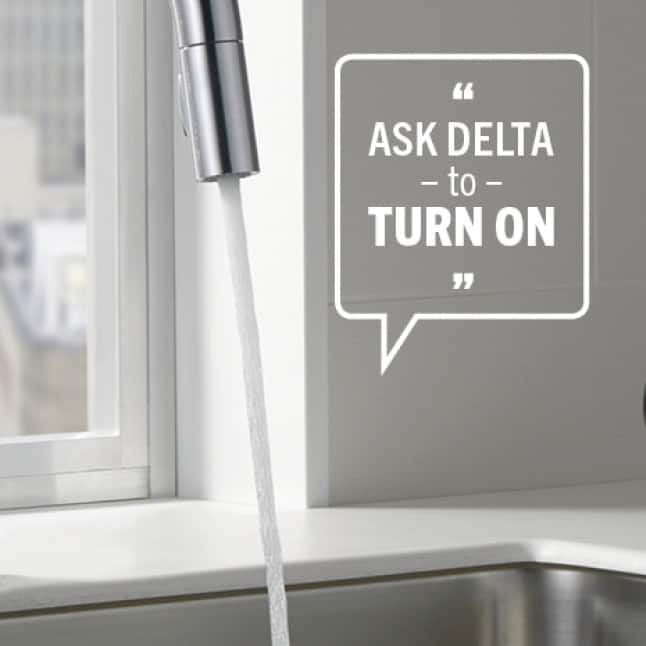 Ask Delta to Turn On