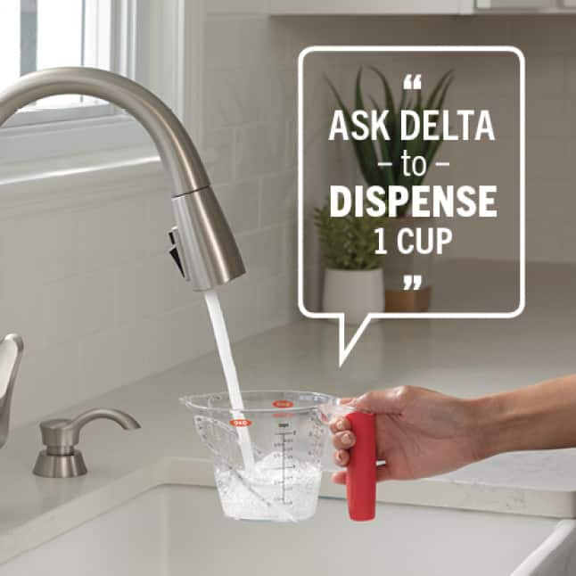 Ask Delta to Dispense 1 Cup