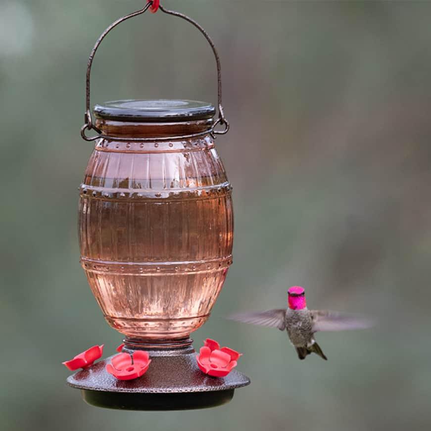 backyard decor, decorative  top fill hummingbird feeders