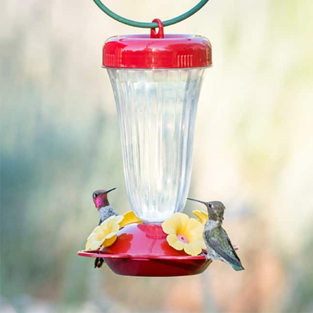 room for multiple birds, core top fill hummingbird feeders